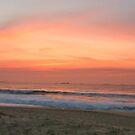 dixon park beach by Ty Cooper
