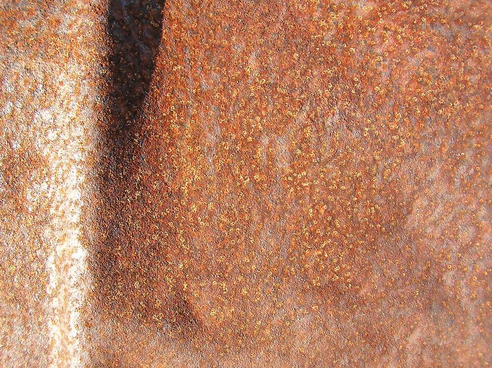 Rusty Landscape by sergei nester