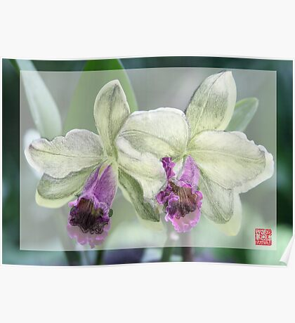 Merged Orchid # 4 Poster