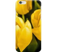 LARGE TULIPS iPhone Case/Skin