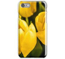 LARGE TULIPS iPhone Case/Skin
