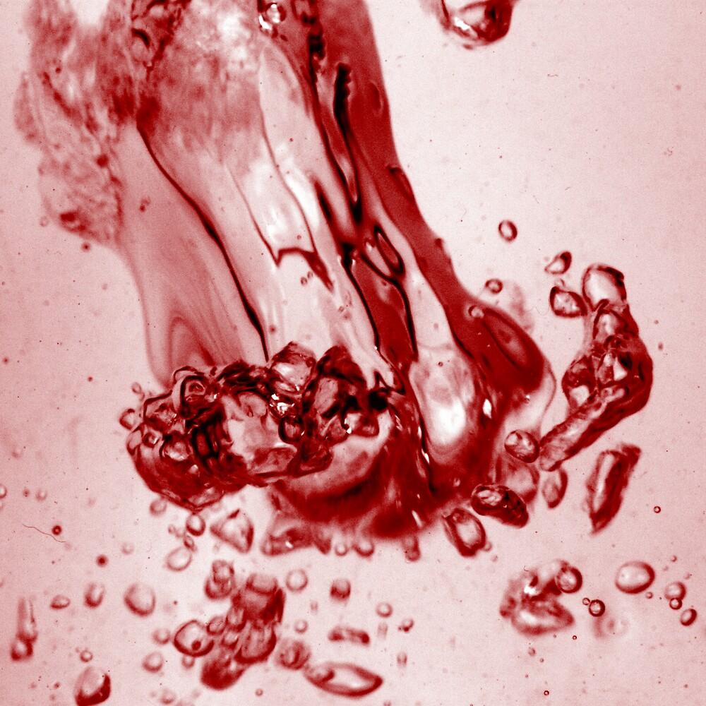 A Scarlet Plunge by Rhys Allen