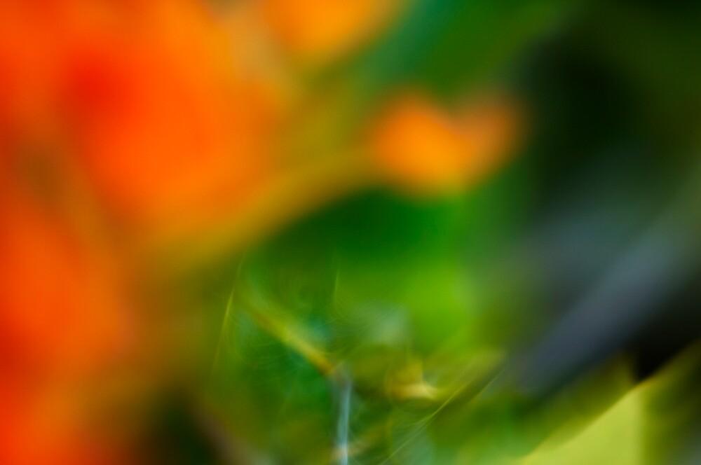 Swoosh I - landscape by Esther Cole