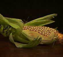 Ear on the Cob by Amanda J Slack-Smith