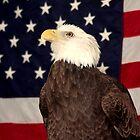BALD EAGLE & FLAG by TomBaumker