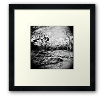 The Faraway Holga Framed Print