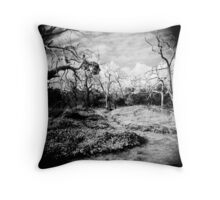 The Faraway Holga Throw Pillow
