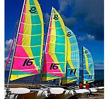 Bright Sails Photographic Print