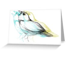 Tricolor Bird Sketch Greeting Card