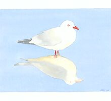 Seagull by Jenny Opie