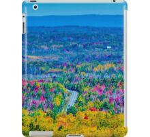 View from Court House Hill iPad Case/Skin