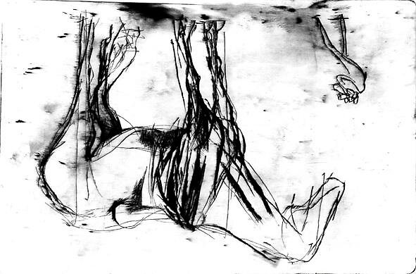 PAPARATZZO, dry point, 50x25cm by Zoja Trofimiuk M.A. B.A.