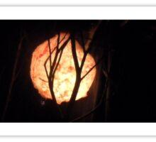 Twilight Footy Sticker