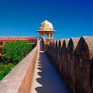 Jaigarh Courtyard Gardens + Chhatri by theurbannexus