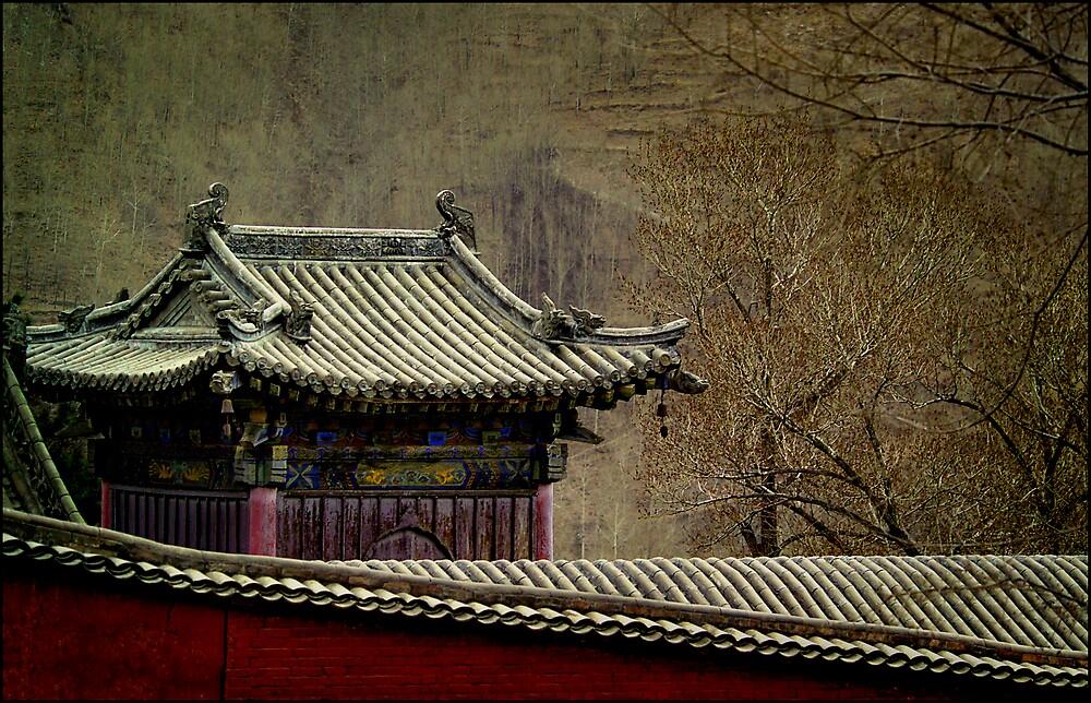 Walled temple, Wutai Shan, China 2006 by John Tozer