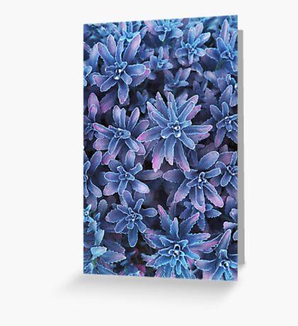 Fantastic plants Greeting Card