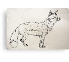 What Did The Fox Say? Canvas Print