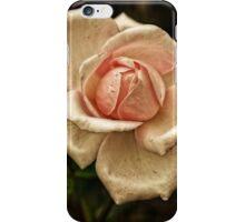 Beauty Fades iPhone Case/Skin