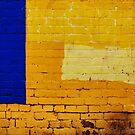 blue and yellow by Janet Leadbeater