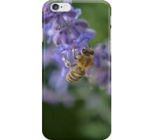 Sage Bee iPhone Case/Skin