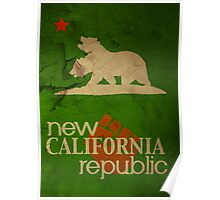 Welcome to the Republic Poster