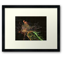 WDV - 330 - Slipping Skin Framed Print