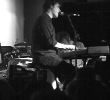 The Whitlams 03 by Tempest