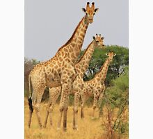 Giraffe Symmetry - African Wildlife Background Unisex T-Shirt