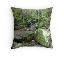 Border Ranges Rainforest Throw Pillow