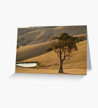 hot and dry Greeting Card