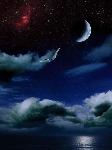 Skydive by John Meissner