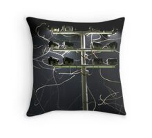 Moth Trails Throw Pillow