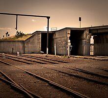 TRAIN TRACKS by L B