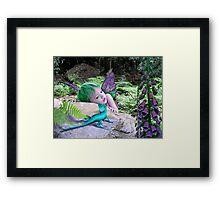 Lizard Gully Framed Print
