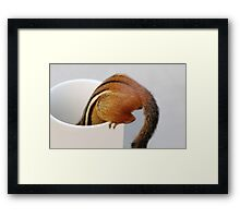 Bottoms Up! Framed Print