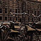 Bikes of Amsterdam by Akira