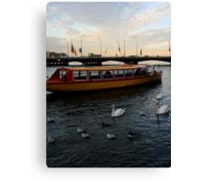 Swans on the Rhône Canvas Print