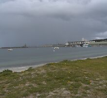 grey day by joannand