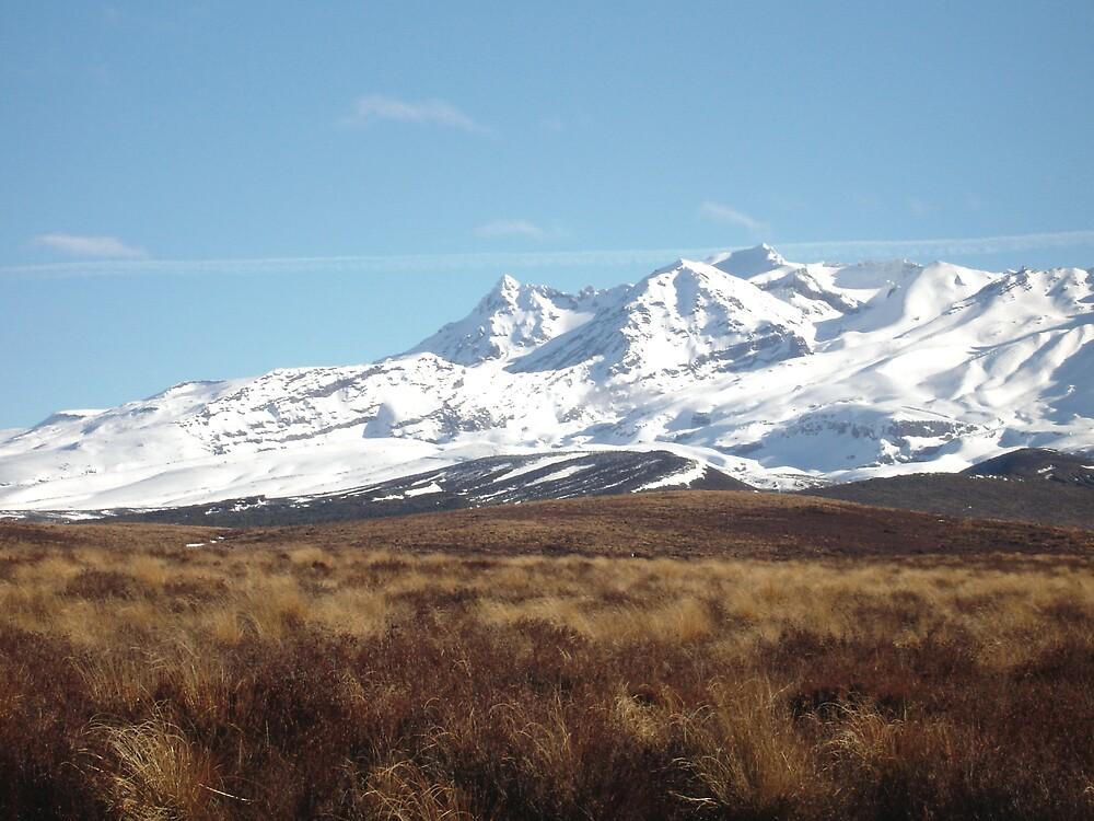 Majestic Mt. Ruapehu by Jasna Bogdan