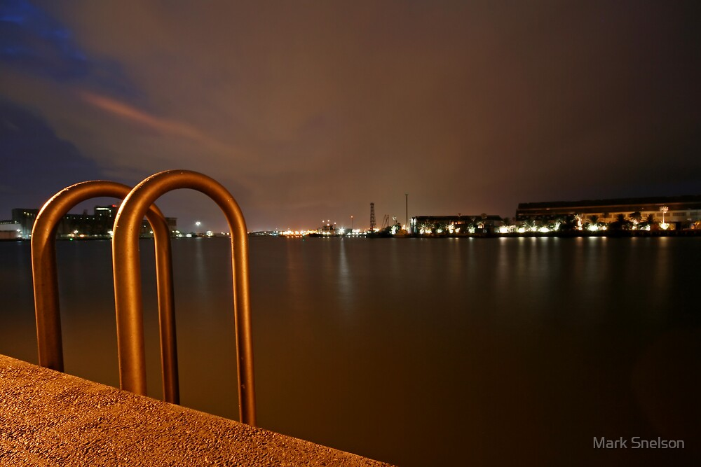 Harbour Ladder by Mark Snelson