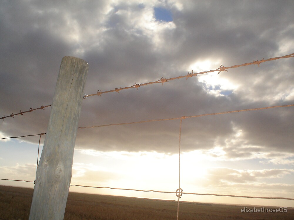 grey skies by elizabethrose05