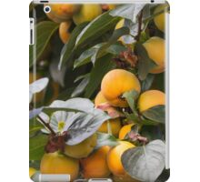 persimmon on tree iPad Case/Skin
