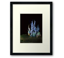 WDV - 368 - Back to Brush Framed Print