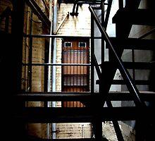 Cellar Door by Naomi-Anne Lovell