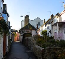 Part of Sherbourne Lane, Lyme,Dorset UK by lynn carter