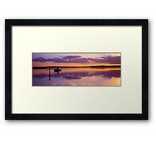 Glow - Swan Bay - Queenscliff Framed Print