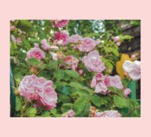 Pink Roses in the Garden Kids Clothes