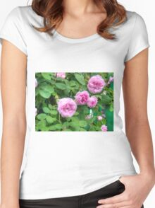 Pink Roses in the Garden 2 Women's Fitted Scoop T-Shirt