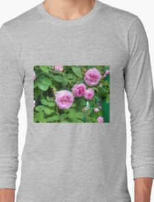 Pink Roses in the Garden 2 Long Sleeve T-Shirt