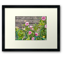 Pink Roses in the Garden 3 Framed Print